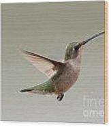 Hummingbird In Flight Wood Print