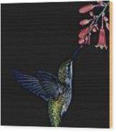 Hummingbird No 2 Wood Print