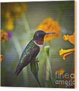 Hummingbird On Guard - Artist Cris Hayes Wood Print