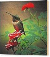Hummingbird On The Rose Wood Print