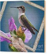Hummingbird Picture Pretty Wood Print