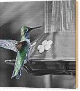 Hummingbird Wings II Wood Print