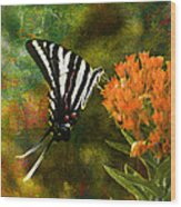 Hungry Little Butterfly Wood Print