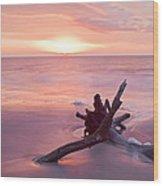 Hunting Island South Carolina Wood Print