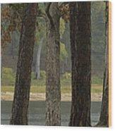Hurricane Creek Wood Print
