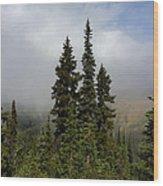 Hurricane Ridge Beauty Wood Print