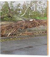 Hurricane Sandy II Wood Print