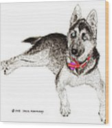 Husky With Blue Eyes And Red Collar Wood Print