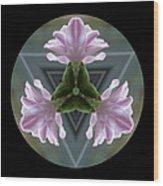 Hyacinth Kaleidoscope Wood Print