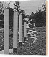 Hyacinth Pillars Wood Print