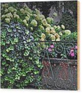 Hydrangeas Salzburg Wood Print