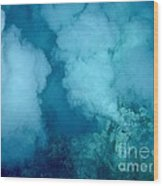 Hydrothermal Smoker Vent Wood Print by Science Source