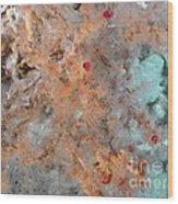 Hydrothermal Vent Tubeworms Wood Print