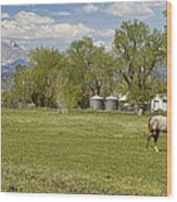 Hygiene Colorado Boulder County Scenic View Wood Print