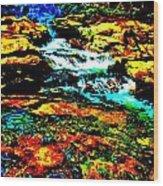 Hyper Childs Brook Z 58 Wood Print