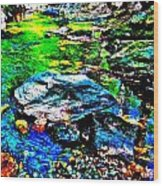 Hyper Childs Brook Z 60 Wood Print