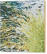 Hypoglycaemic Wood Print
