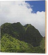 Iao Valley Wood Print