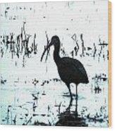 Ibis By Pintail Nature Drive Cameron Prairie Nwr La Wood Print