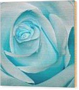 Ice Blue Rose Wood Print