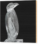 Ice Cold Penguin Wood Print