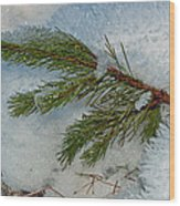 Ice Crystals And Pine Needles Wood Print