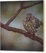 Ice Droplet Bird Wood Print