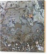 Ice On The Rocks Wood Print