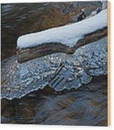 Ice Scallops Wood Print