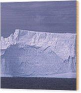 Iceberg Antarctica Wood Print