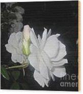 Iceberg Rose In The Night Wood Print