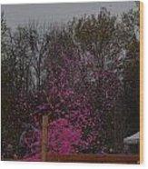 Icee Pink Cold Water Challenge Wood Print