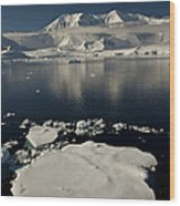 Icefloe In The Neumayer Channel Wood Print