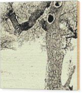 Ichabod Lane Wood Print