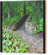 Ichetucknee Stairway Wood Print