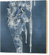 Icicle Formation Wood Print