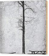Icing On The Lake Wood Print