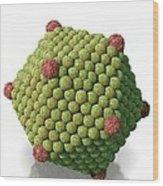 Icosahedral Virus Particle, Artwork Wood Print