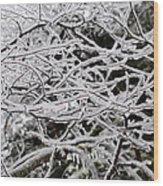 Icy Dreams Wood Print