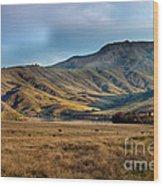 Idaho Foothills Wood Print