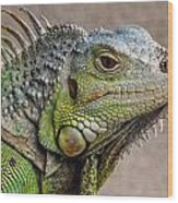 Iguana Profile Wood Print