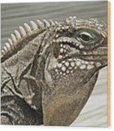 Iguana Two Wood Print