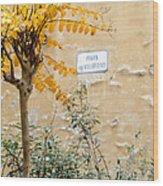 Il Piazza Malcontenti Wood Print by Michael Flood