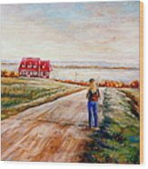 Ile D'orleans Road To The Red Gabled House Quebec Maritime Landscape Wood Print