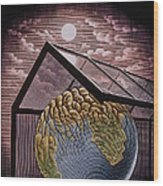 Illustration Of The Greenhouse Effect Wood Print