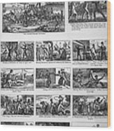 Illustrations Of The Antislavery Wood Print