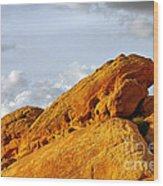 Imagination Runs Wild - Valley Of Fire Nevada Wood Print by Christine Till
