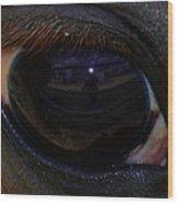Immie's Eye Wood Print