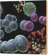 Immune Response Antibody 2 Wood Print