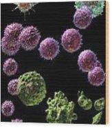 Immune Response Cytotoxic 2 Wood Print